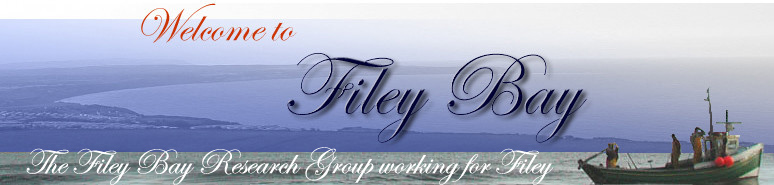 Fileybay logo